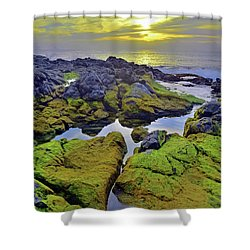 Shower Curtain featuring the photograph The Mossy Rocks At Sunset by Tara Turner