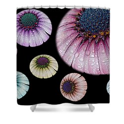 The Mother Ship Shower Curtain