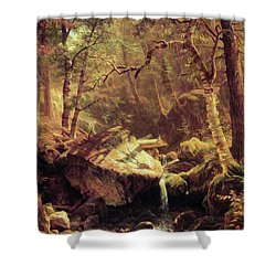 The Mountain Brook Shower Curtain