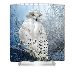The Mystical Snowy Owl Shower Curtain