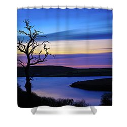 Shower Curtain featuring the photograph The Naked Tree At Sunrise by Semmick Photo