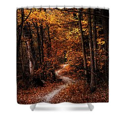 The Narrow Path Shower Curtain