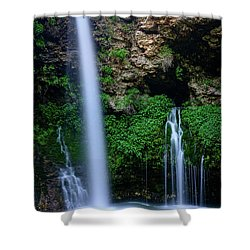 The Natural World Shower Curtain