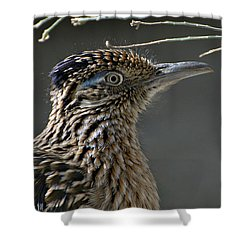 The Need For Speed Shower Curtain by Fraida Gutovich