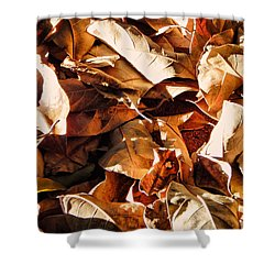Shower Curtain featuring the photograph The Nest by Beto Machado