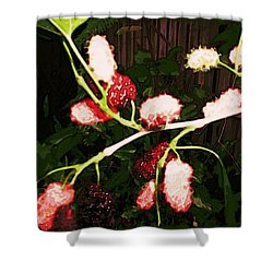 Shower Curtain featuring the digital art The New Mulberries by Winsome Gunning