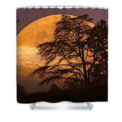 The Night Is Calling Shower Curtain