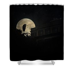 Shower Curtain featuring the photograph The Night Of The Heron by Chris Lord