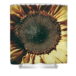 Shower Curtain featuring the photograph The Not So Sunny Sunflower by Karen Stahlros