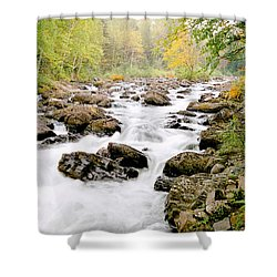 Shower Curtain featuring the photograph The Nymphs Of Moxie Stream Photo by Peter J Sucy