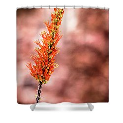 Shower Curtain featuring the photograph The Ocotillo by Onyonet  Photo Studios