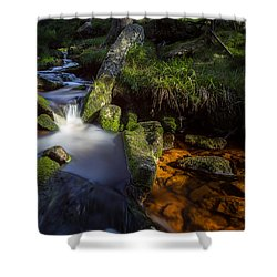 the Oder in the Harz National Park Shower Curtain by Andreas Levi