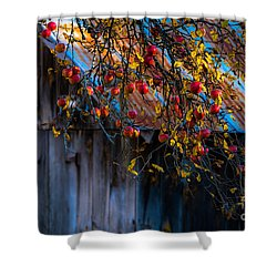 The Old Barn Shower Curtain by Sherman Perry