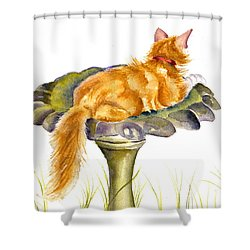The Old Birdbath Shower Curtain