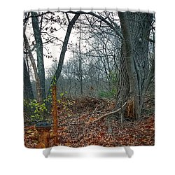 The Old Fire Hydrant Shower Curtain