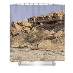 The Old Gatekeeper 03 Shower Curtain