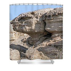 The Old Gatekeeper Shower Curtain