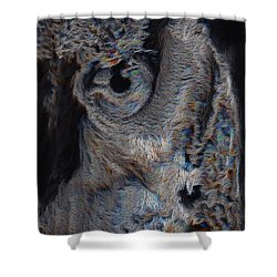 The Old Owl That Watches Shower Curtain by ISAW Gallery