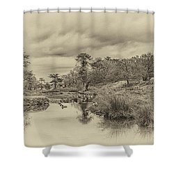 The Old Pond Shower Curtain