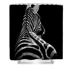 The On Looker Shower Curtain