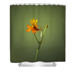 The One - Asclepias Curassavica - Butterfly Milkweed Shower Curtain by Johan Hakansson