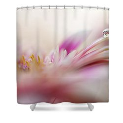 Shower Curtain featuring the photograph The One. Macro Gerbera by Jenny Rainbow