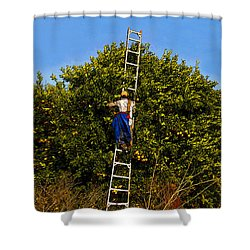 The Orange Picker Shower Curtain by David Lee Thompson