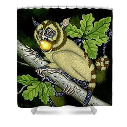 The Orbler Shower Curtain