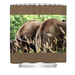 The Other Side Shower Curtain by Angela Rath