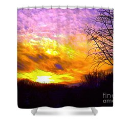 The Other Side Of The Rainbow Shower Curtain by Robyn King