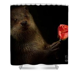 Shower Curtain featuring the photograph The Otter by Christine Sponchia