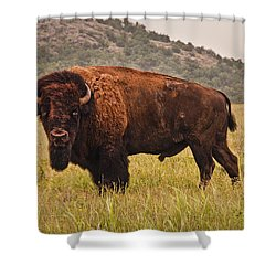 The  Outcast Shower Curtain by Tamyra Ayles