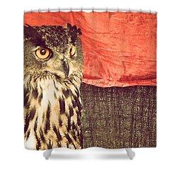 The Owl Shower Curtain by Pedro Venancio
