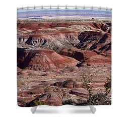 The Painted Desert  8062 Shower Curtain by James BO  Insogna