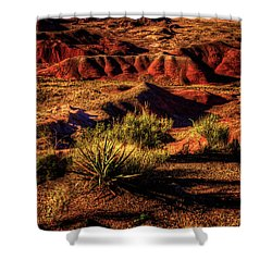 The Painted Desert From Kachina Point Shower Curtain