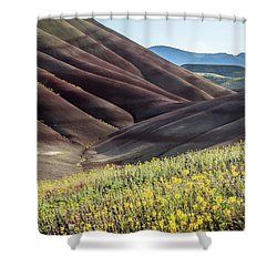 The Painted Hills In Bloom Shower Curtain