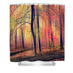 Shower Curtain featuring the photograph The Painted Woodland by Jessica Jenney