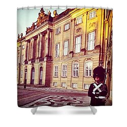 The Palace In Winter, Copenhagen Shower Curtain by Molly Malone
