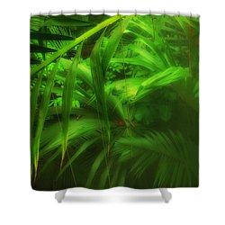 Shower Curtain featuring the photograph The Palm Forest  by Connie Handscomb