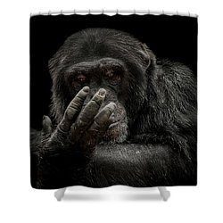 The Palm Reader Shower Curtain by Paul Neville