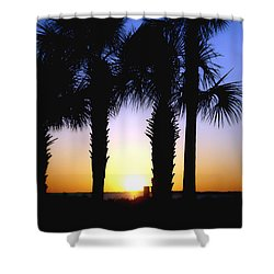 Shower Curtain featuring the photograph The Palms At Sunset by Debra Forand
