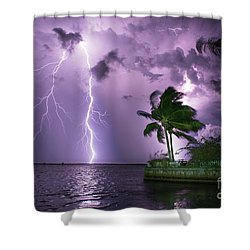 The Palms Shower Curtain