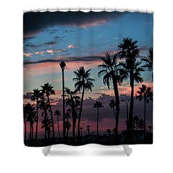 The Palms Shower Curtain by Ralph Vazquez