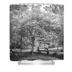 The Park Bench Shower Curtain by Louis Ferreira