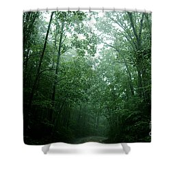 The Path Ahead Shower Curtain by Clayton Bruster