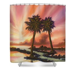 The Path Ahead Shower Curtain by James Christopher Hill