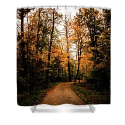 The Path Shower Curtain by Annette Berglund