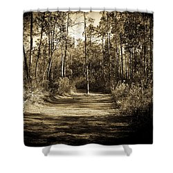 The Path Before Me, No. 6 Shower Curtain