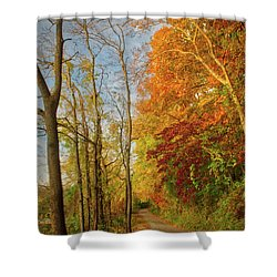 Shower Curtain featuring the photograph The Path In Fall by Mark Dodd