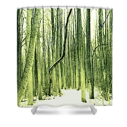 The Path Less Taken Shower Curtain